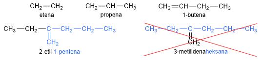 Reproduksi Paramecium, Ciri & Gambar Paramecium | Konjugasi Paramecium & Pembelahan Biner