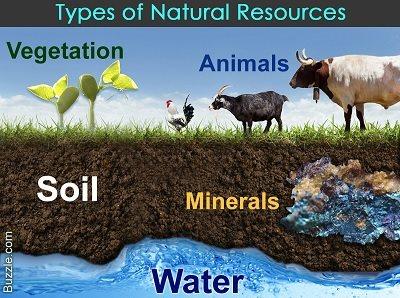 Sumber Daya Alam Pengertian Jenis Pemanfaatan Contoh